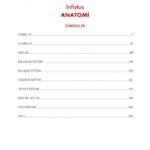 2018-anatomi-1