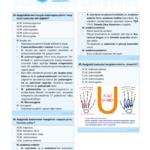 cb-anatomi-5