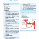 cb-anatomi-7