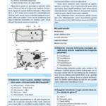 cb-mikrobiyoloji-2