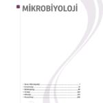 tumtus_mikrop_1